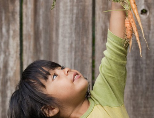 How to get your kids to eat healthy? Here are 9 foolproof tips