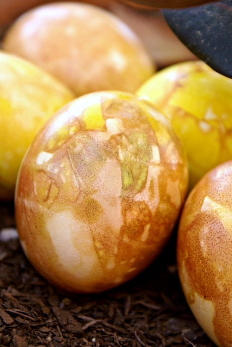 onion-dyed-easter-eggs-vertical